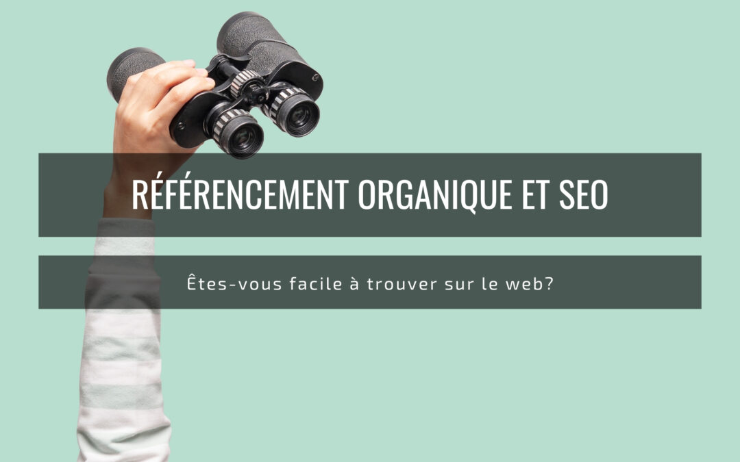 Antiagence-blogue-referencementorganique-seo-jumelles